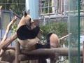上野動物園シャンシャン、お母さんのシンシンとお食事